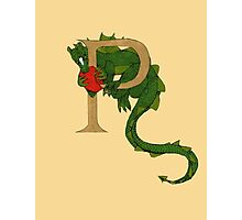 "Oscar and the Roses ""P"" (Illustrated Alphabet) Photographic Print"