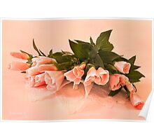 Peach Godetia's And Lace  Poster