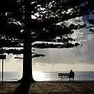 Morning @ Newport by ozczecho