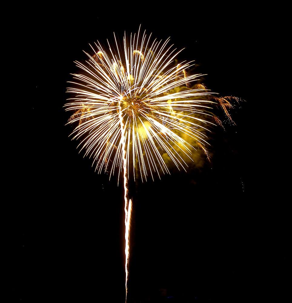 July Fireworks by mbuban