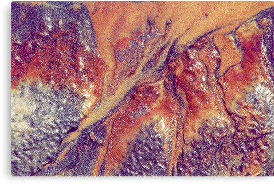 coloured sands by caroline ellis