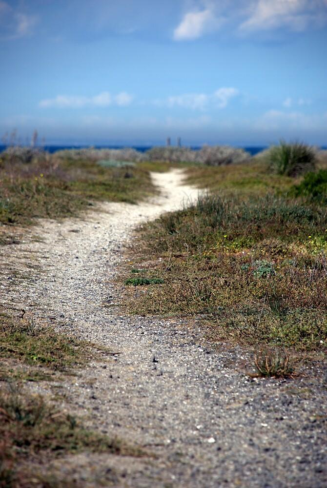 Jalur Pantai by Gav (gRizzle) Rose
