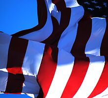 Flag I (George Washington) by REHILL61