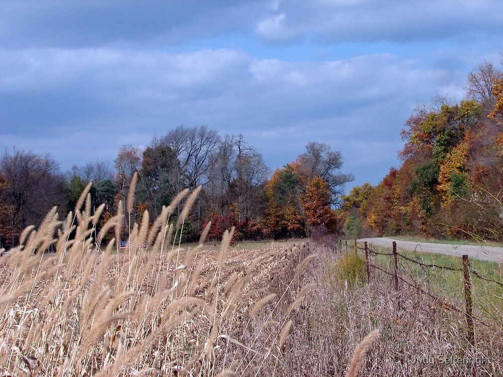 Autumn Sky by Judy Seltenright