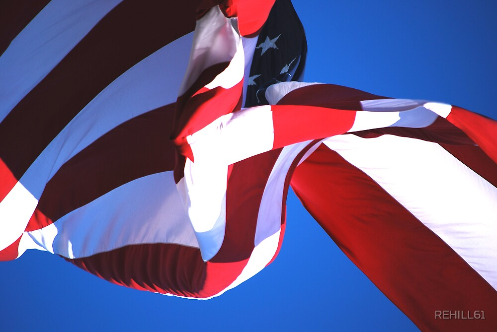 Flag IV (Stars and Stripes) by REHILL61