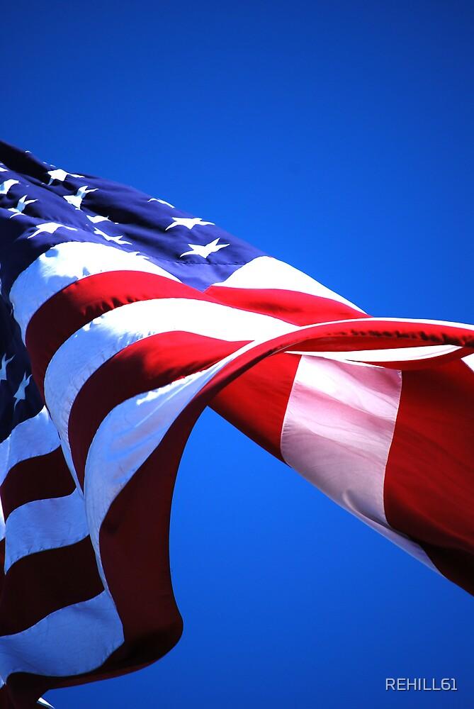 Flag VIII (Freedom) by REHILL61