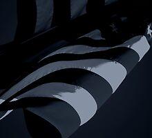 Black Flag II (Spock) by REHILL61