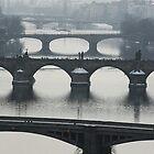 Bridges by Antoine Beyeler