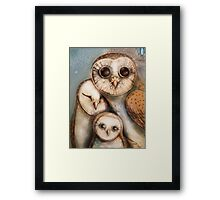 three wise owls Framed Print