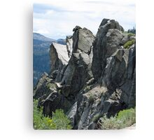 Rock Side Canvas Print