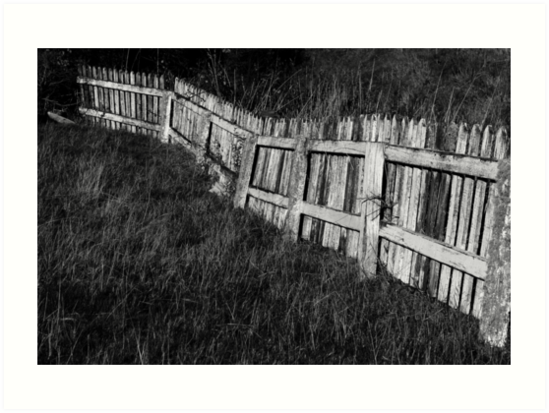 fence by Mike Warman