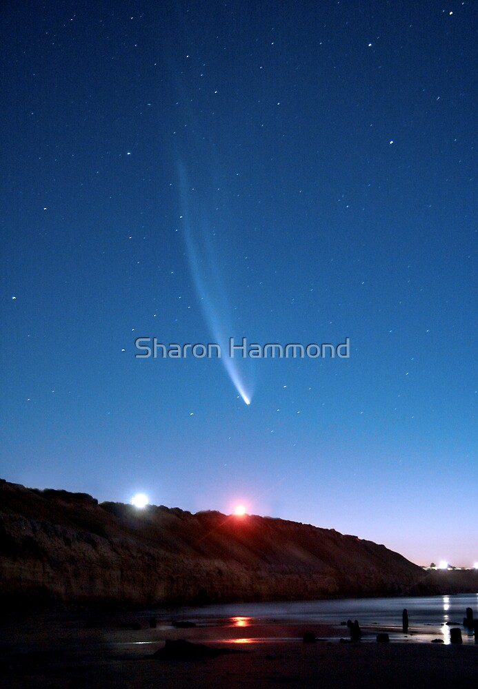 Comet by Sharon Hammond