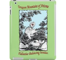Valentine Balancing Rock in the Arizona Dragoon Mountains iPad Case/Skin