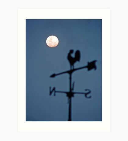 Have you ever seen a rooster crowing at the moon? Art Print
