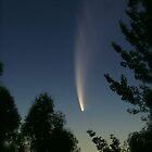 Comet McNaught by Brenda Anderson
