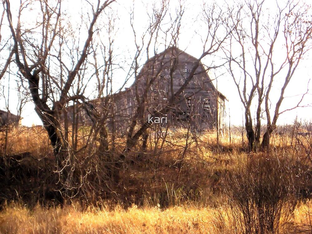 Old Barn II by kari