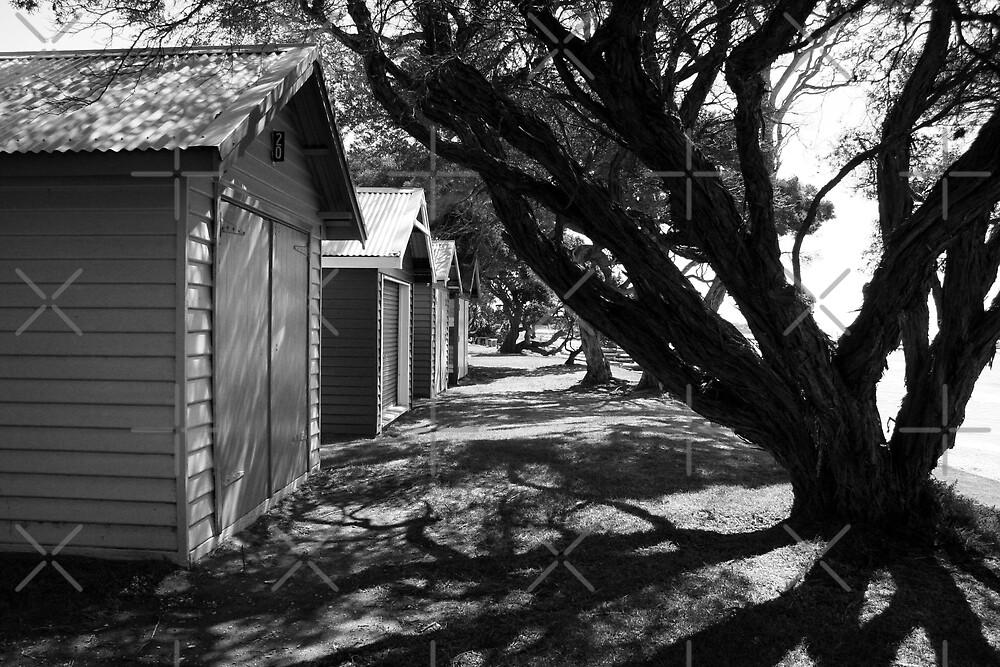 Blairgowrie Beach Houses Black & White  by JHP Unique and Beautiful Images