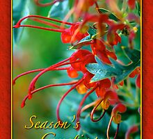 Seasons Greetings 1 by samatar