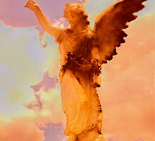 sunset angel by Peta Hurley-Hill