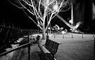 A winter's night by the Harbour Bridge by DavidIori