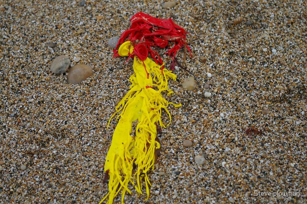 Burst balloon's by Steve plowman