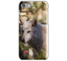 A White Wolf in the Forest iPhone Case/Skin