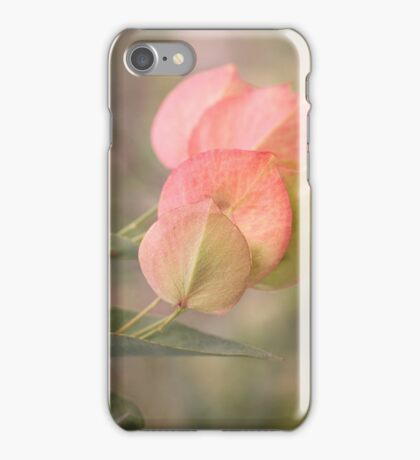 You know summer is coming when Bookleaf Peas turn Gelato! iPhone Case/Skin