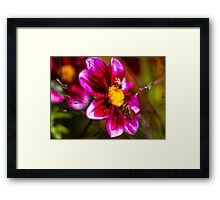 The Bees and the Butterflies Framed Print