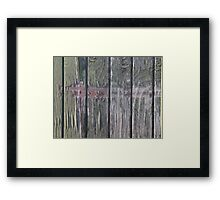 Grunge old wood background Framed Print