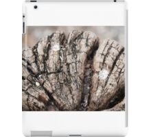Old tree cross section - years go by iPad Case/Skin