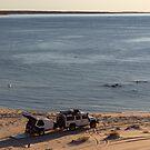 Pelican, Defender, Sand, Sea by Robert Pepper
