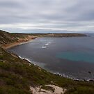 Pt Licoln NP by robertp