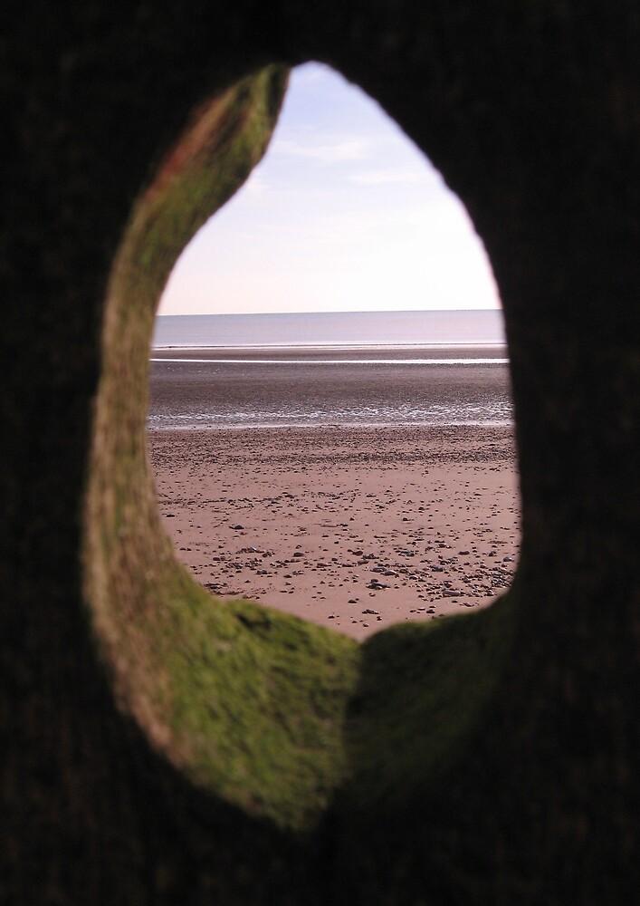 View through a tear drop. by Sara Wiggins