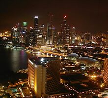 Singapore City - Night View by Anshuman Mukherjee