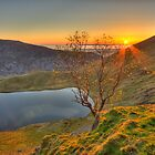 Bowscale Tarn by Rich Gale