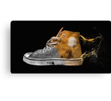 Drainer Trainer Canvas Print