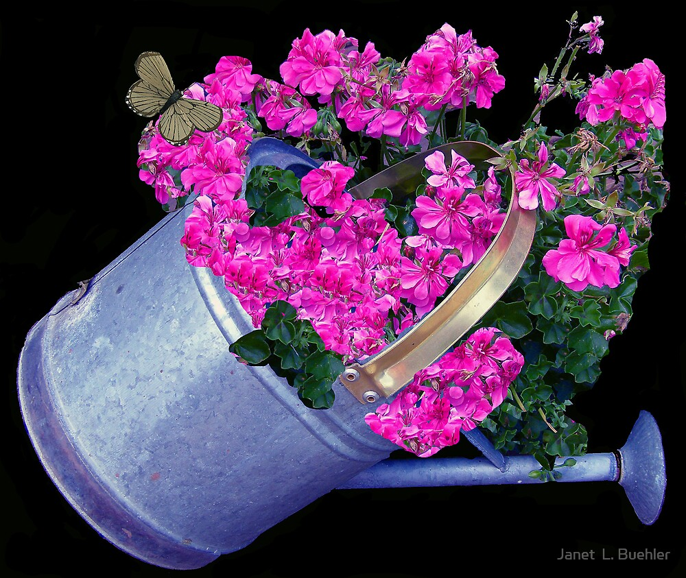 THE WATERING CAN  by Janet  L. Buehler