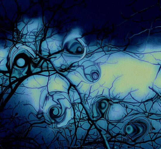 tree's have eye's by Linda Sannuti