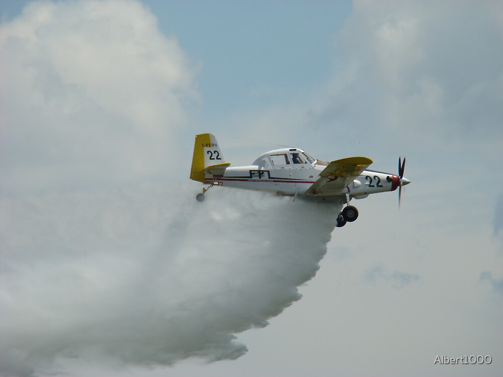 Water bomber by Albert1000