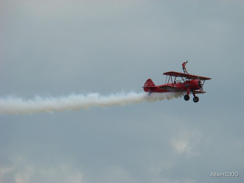 Wing walker by Albert1000