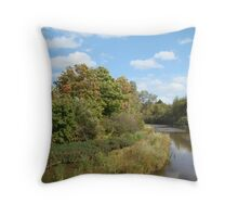 Scenic water Throw Pillow
