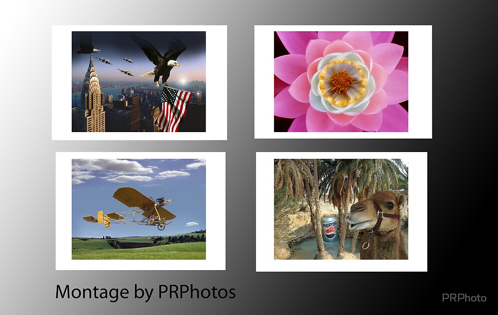 Montage by Pierre by PRPhoto