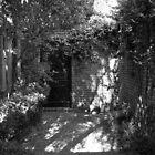 Secret Courtyard II by Michael Reimann