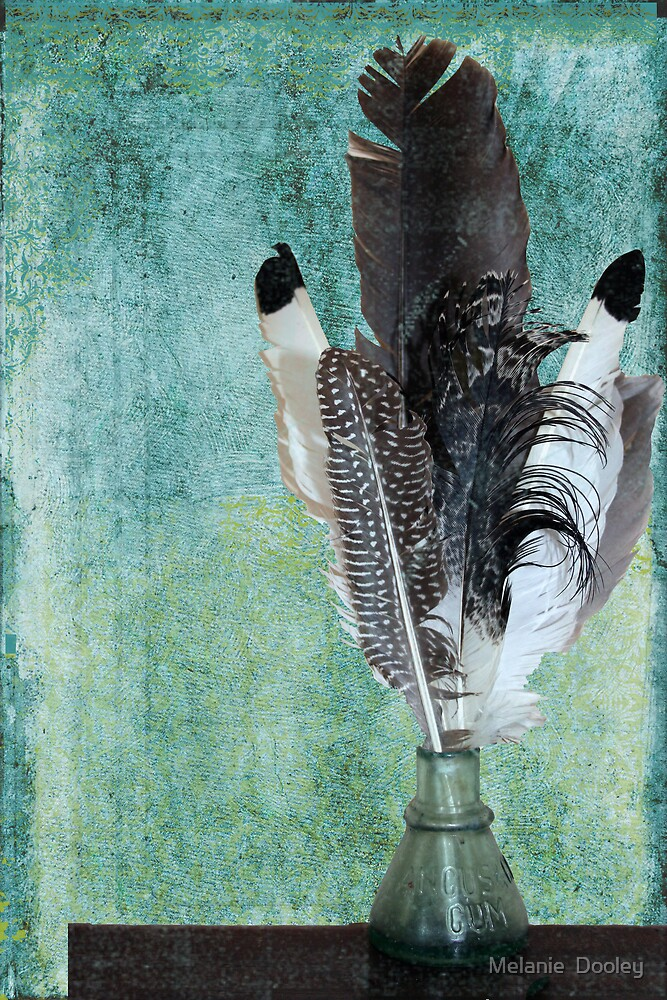 Feathers by Melanie  Dooley