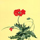 Red Poppy from Amphai by Baina Masquelier
