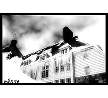 Timberline Photographic Print