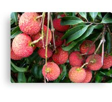 Lychee Fruit Canvas Print