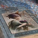 Book and Glasses by © Joe  Beasley IPA