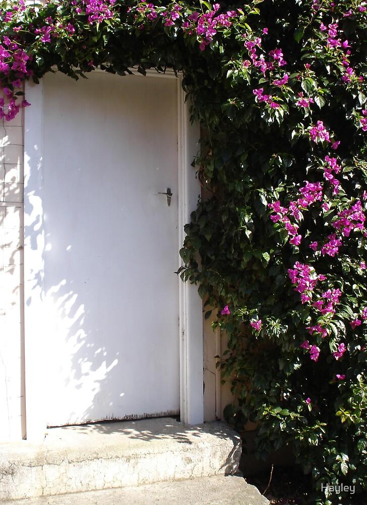 Hidden Door by Hayley