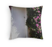 Hidden Door Throw Pillow